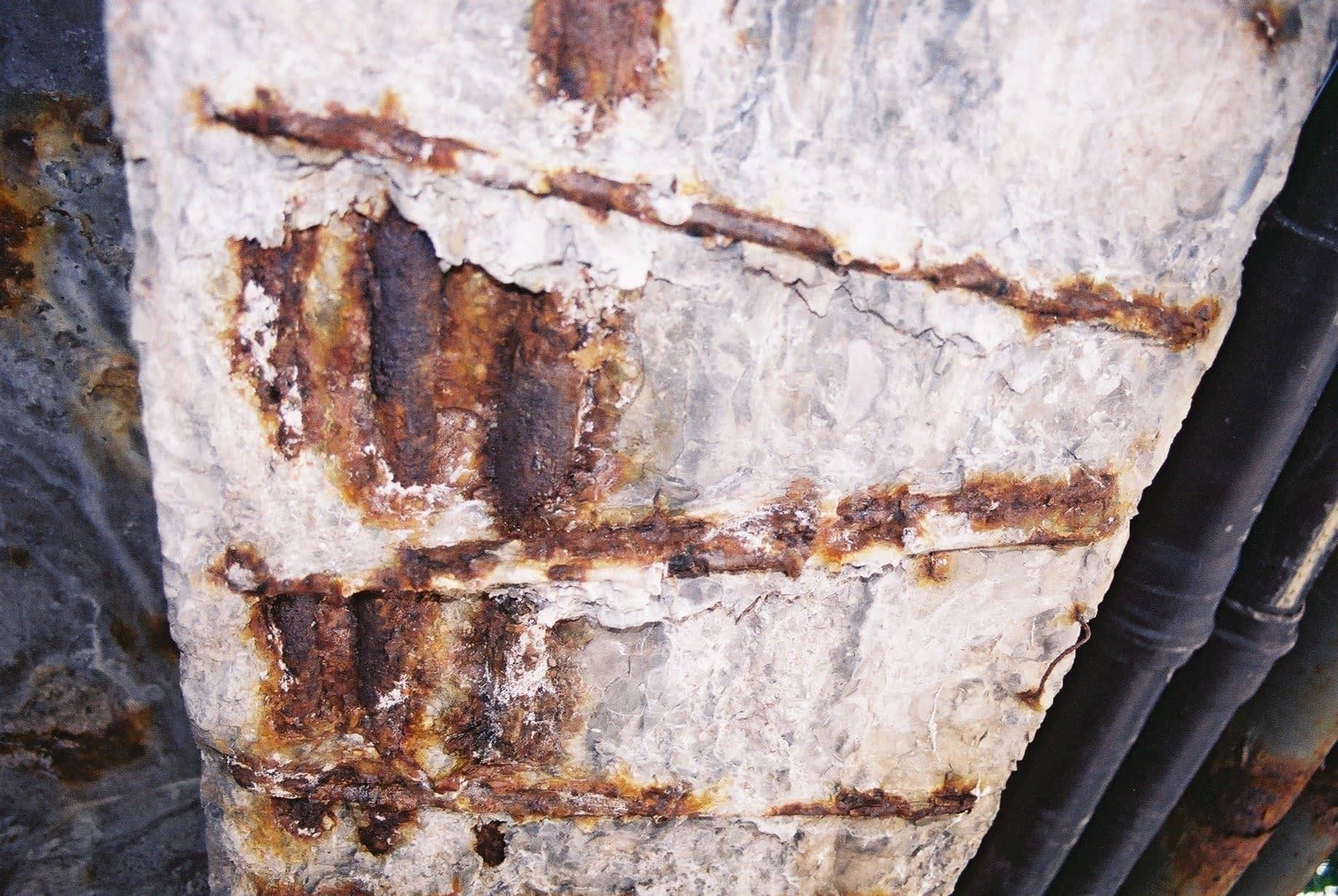 Радиационная коррозия бетона бетон с подачей москва